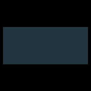 camel_active_Logo_RAL7016_300x300